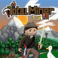 Total Miner Review