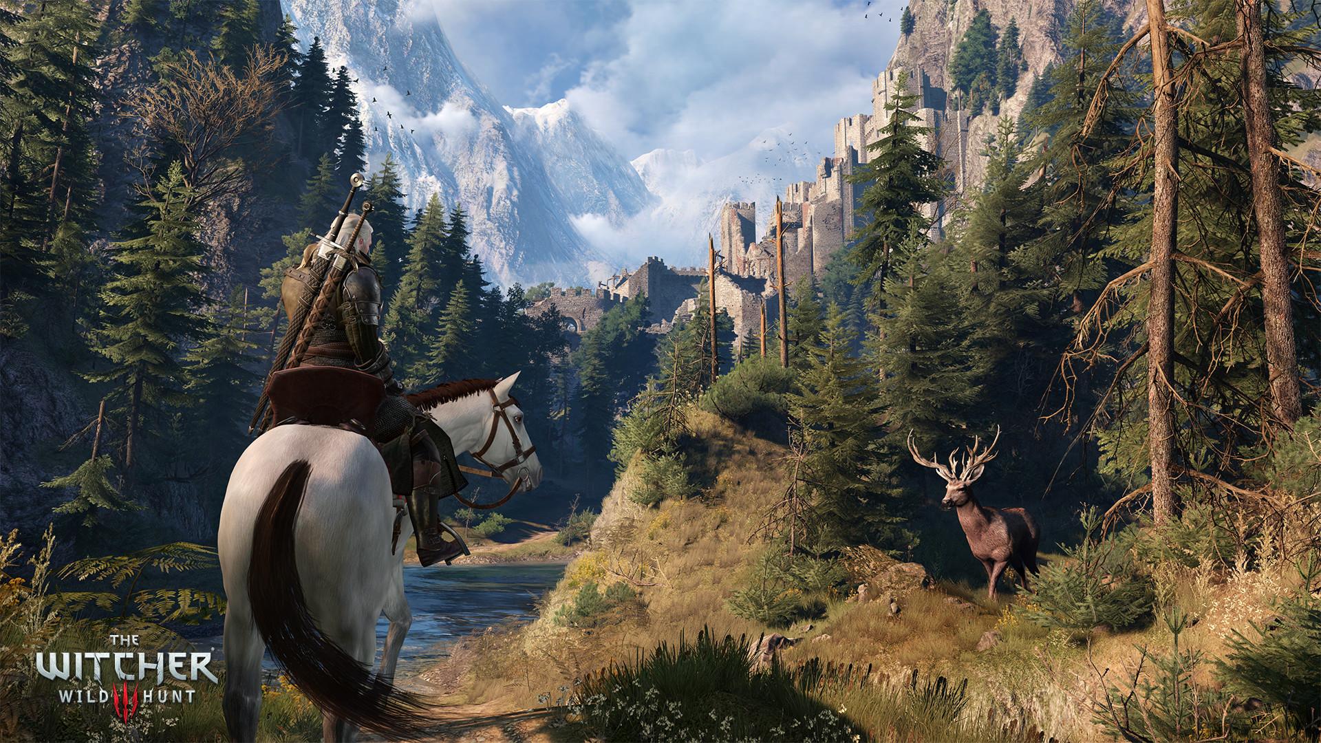 The Witcher 3 Wild Hunt Screenshot 3
