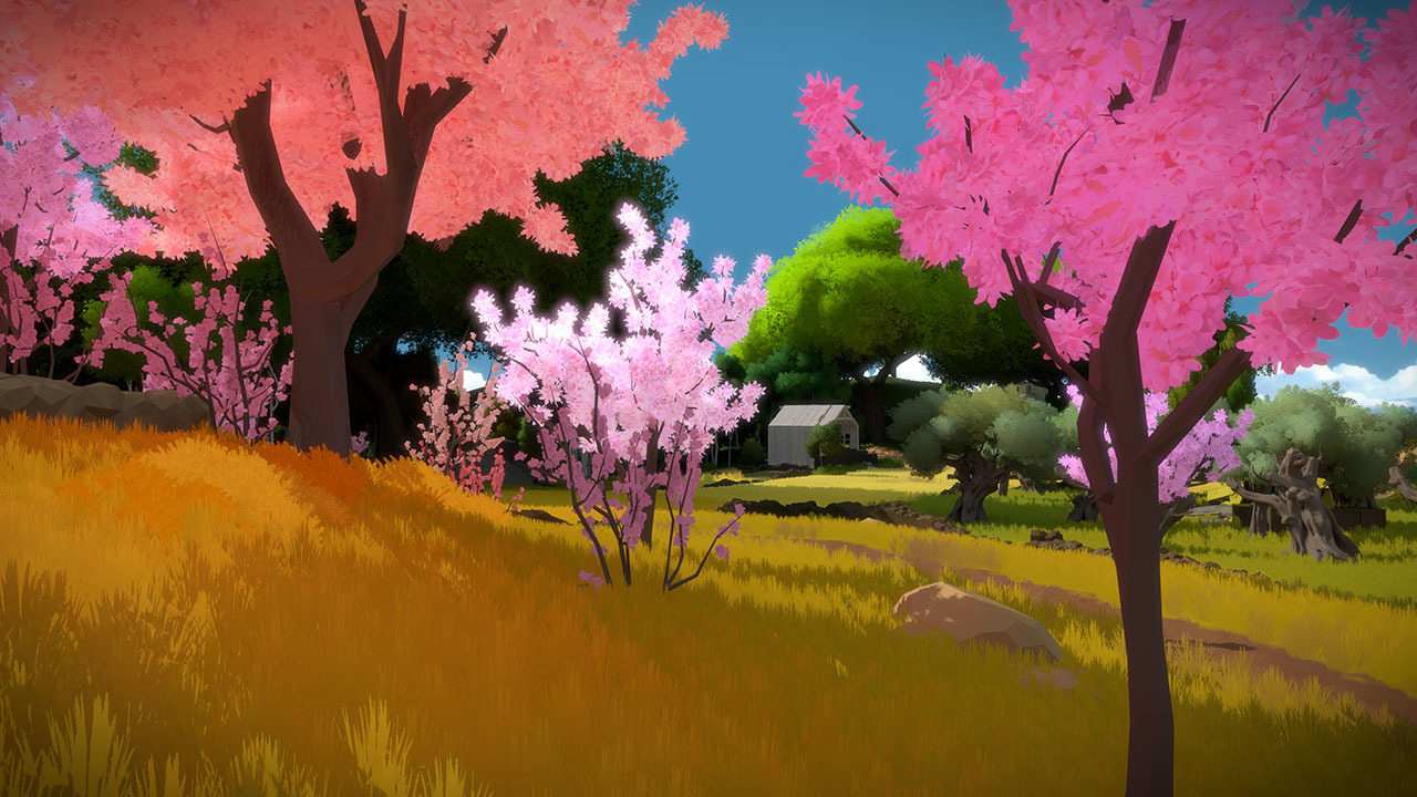 The Witness PS4 Game Review Screenshot 3