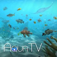 aqua-tv-review